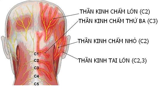 ban-co-the-mac-phai-nhung-benh-gi-khi-dau-nua-dau-ben-phai2