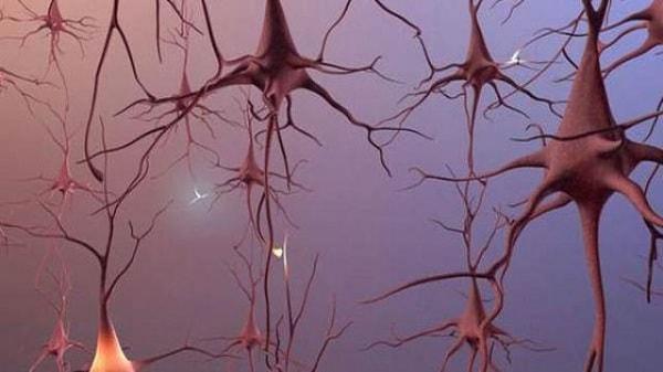 Bệnh teo não có nguy hiểm không? 2