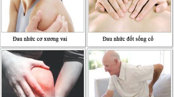 Người già loãng xương nên ăn gì