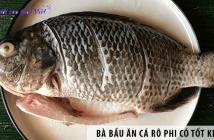 Bà bầu ăn cá rô phi có tốt không?