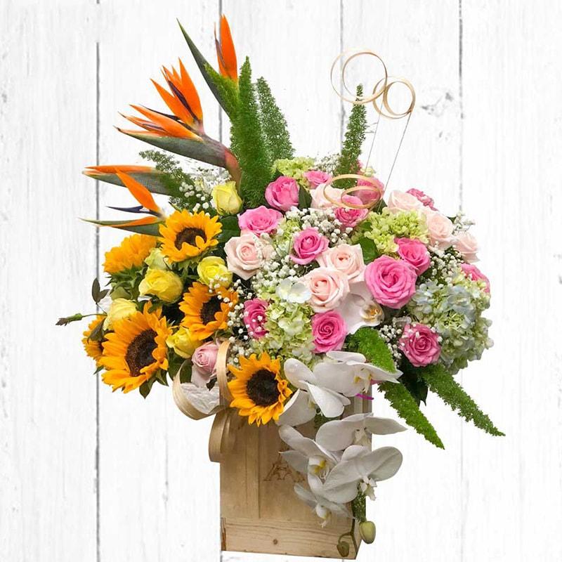 Tặng hoa lan vào ngày mừng thọ ông bà